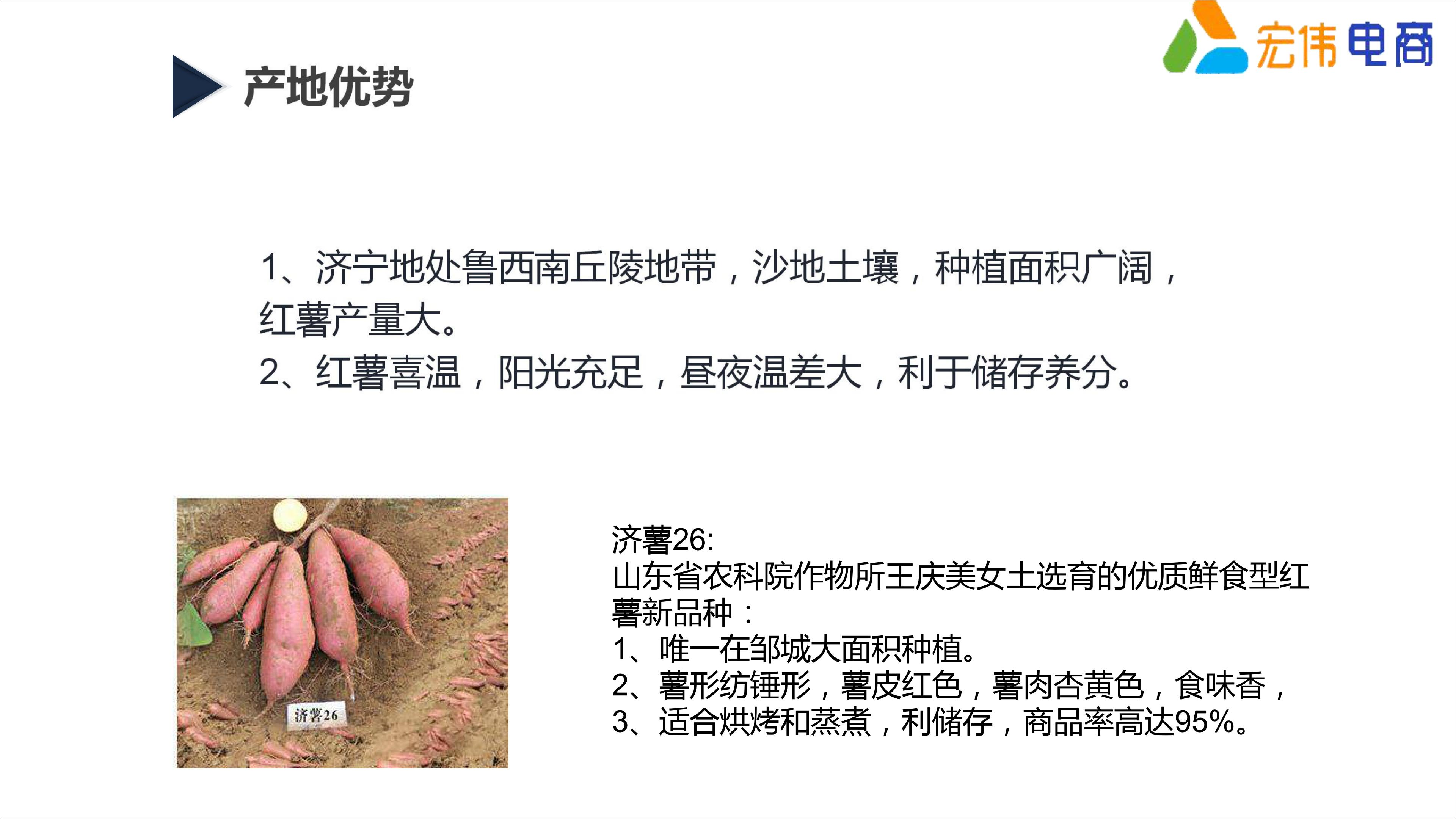 红薯助力万人脱贫创业计划定稿(1)_14.jpg